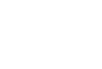 Allegheny Equine Veterinary Services