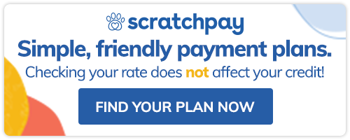 Scratchpay at Allegheny Equine Veterinary Service